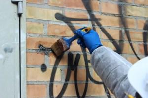 Vandalismo Grafico (1)